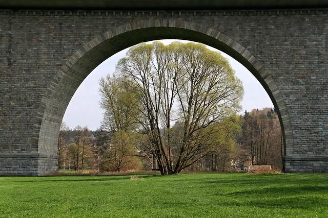 Baum unter Brücke