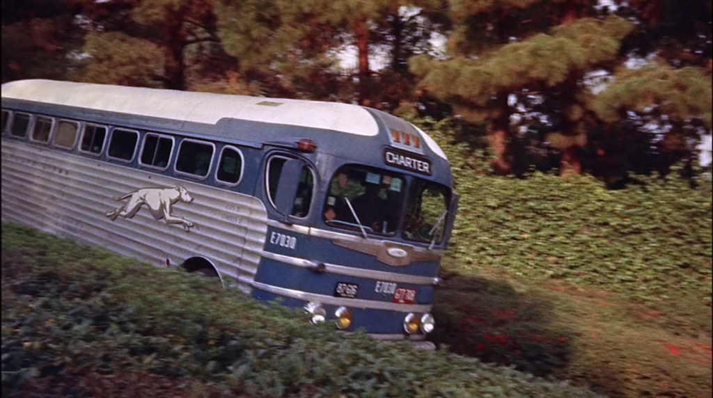 Greyhound Bus,