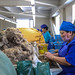 39229-022: Agriculture and Rural Development Project in Mongolia