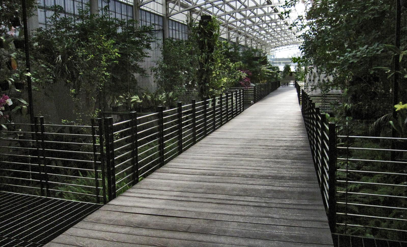 Parque Bicentenario 105