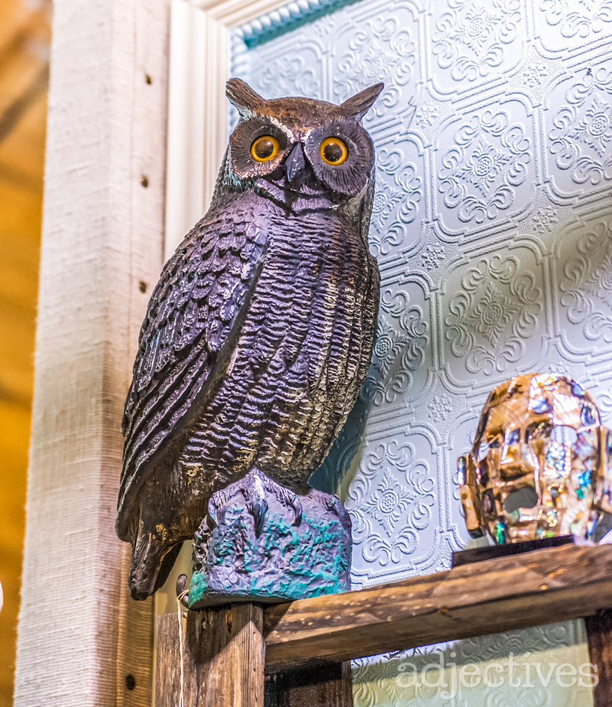 Adjectives-Altamonte-New-Arrivals-from-The-Owls-Nest-909-2