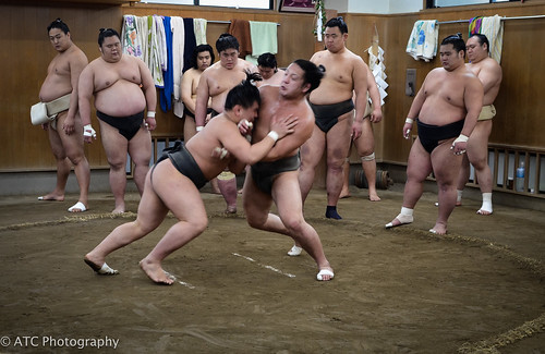 Sumo stable   by Adrian in Bangkok