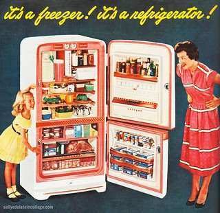 It's a Freezer! It's a Refrigerator!