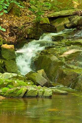 water fall stone waterfall stream susquehanna tree root maryland 2012 woods river leaves green nikond700 d700 nikon 2485 mm f284d lawsonpix billlawson
