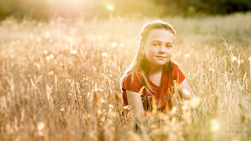 sunset girl beautiful beauty field youth golden nikon glow dof bokeh wheat getty gettyimages d800 calumet shallowdepthoffield beautydish travelite