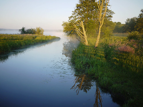 morning light summer mist lake reflection tree nature water fog river landscape eau europe mood sweden natur træ atmosphere boom árbol brook nordic sverige scandinavia tre arbre árvore baum träd 树 daybreak sommar morgon landskap mälaren sjö sigtuna дерево steninge