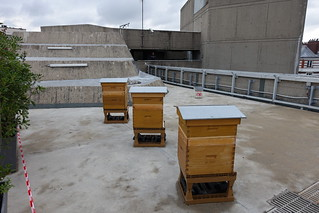 Artificial beehive @ Terrace @ Headquarters @ French Communist Party @ Paris | by *_*