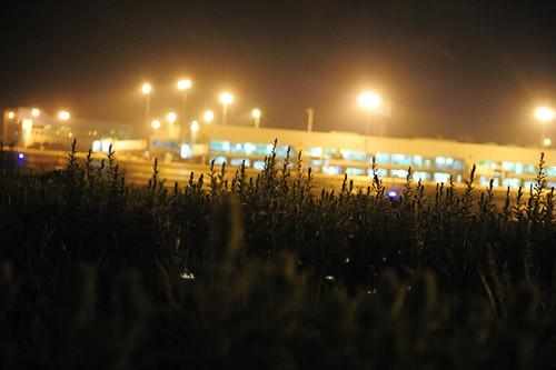 china news portraits airport photojournalism 中国 kunming yunnan press 人物 纪实摄影 云南 昆明 documentaryphotography pressphotography 新闻摄影 新闻人像摄影 wujiaba 巫家坝国际机场