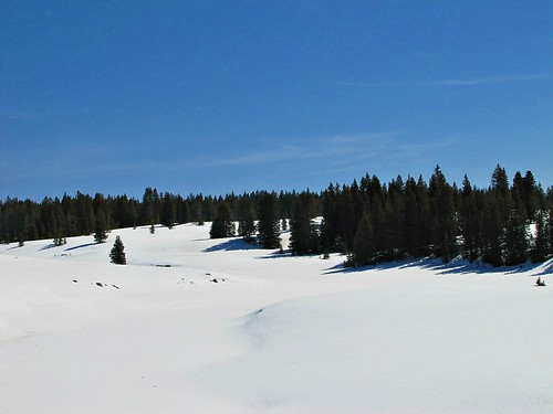 winter sky snow mountains forest colorado grandmesa