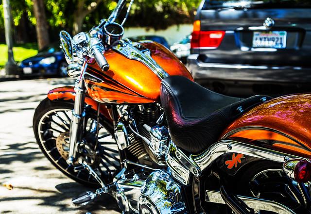 Harley Davidson view