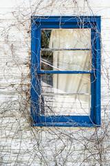 Haint Blue Gullah Window, St. Helena Island, South Carolina