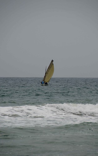 Passejada de les embarcacions de vela llatina
