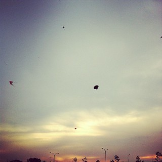 Kites in the Winds | by royina