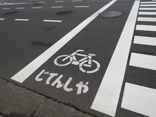 Bicycle lane, Tokyo, Japan | by Liz Castro