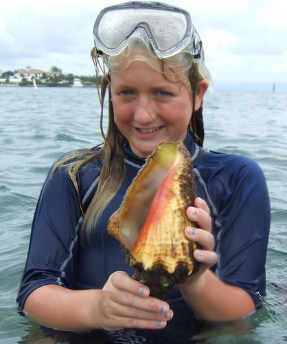 Jackie finds a queen conch.