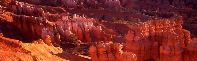 bryce canyon sunrise pano