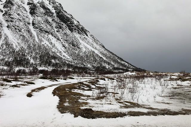 morfjorden - lofoten - norway - 07