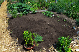 6/9: compost applied