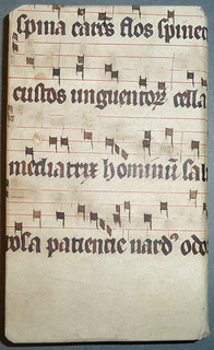 Portion of a parchment leaf from a Latin liturgical music