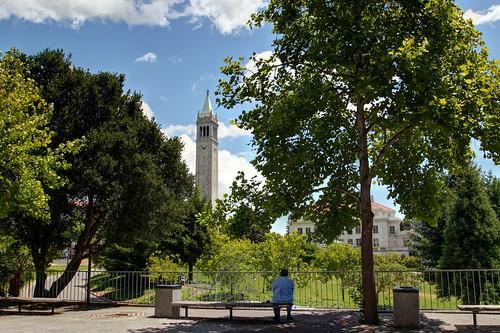 Scenes from UC Berkeley - Man on Bench   by John-Morgan