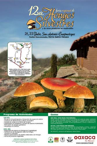 12a. Feria Regional de Hongos Silvestres