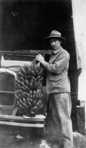 bananas bananafarming fruitfarming agriculture tropicalfruit 1920s calicocreek queensland australia hupmobiletourer fedorahat stevebeattie statelibraryofqueensland slq bunchofbananas outdoors