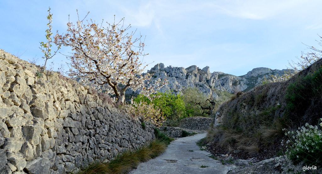 Cerca de Benissili. Valle de la Gallinera.