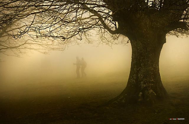 Montañeros entre niebla