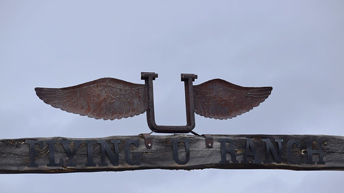 flying-u-logo | by What's On Cariboo