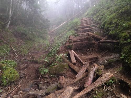 鳳凰山 ドンドコ沢 崩壊丸太階段 | by ichitakabridge