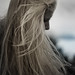 C'est le vent, Betty by Alienated Romantic