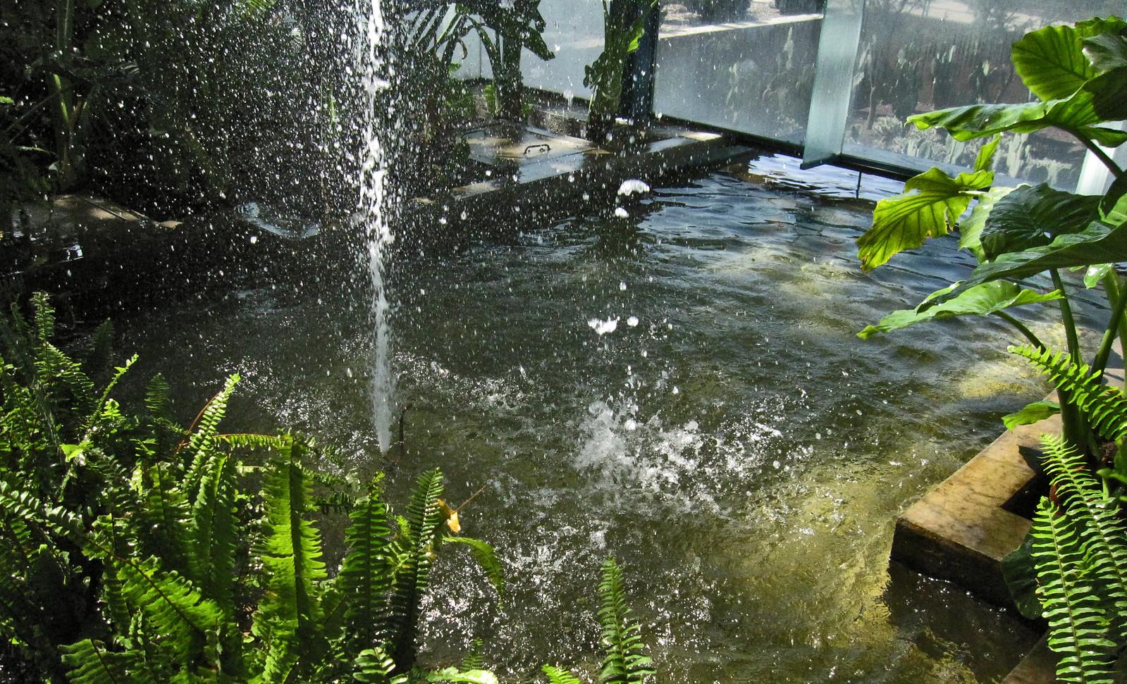 Parque Bicentenario 53
