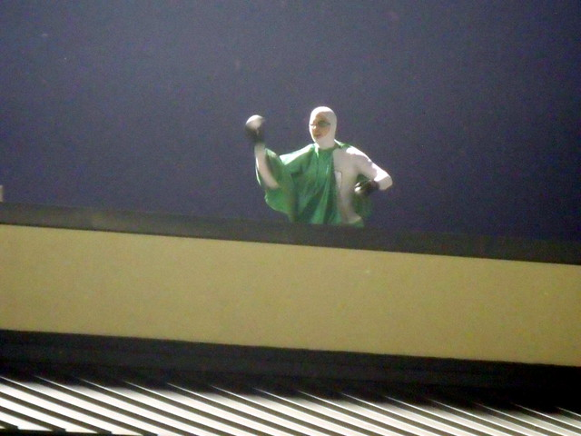 Roofman 1