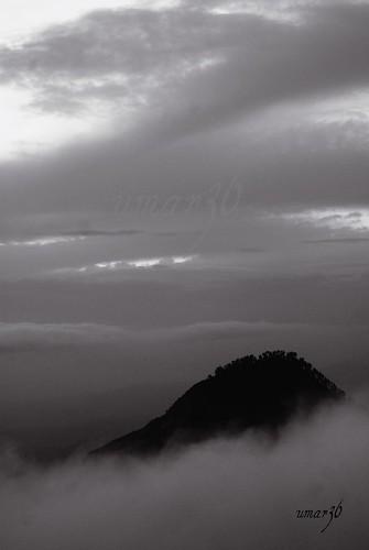trees pakistan sunset sky white mountain snow clouds peak balck swat mingora kpk sonyalphadslra200