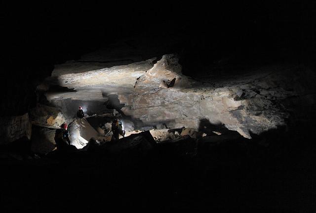 CARNIVOROUS CAVE