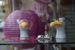 bird's eyeglasses