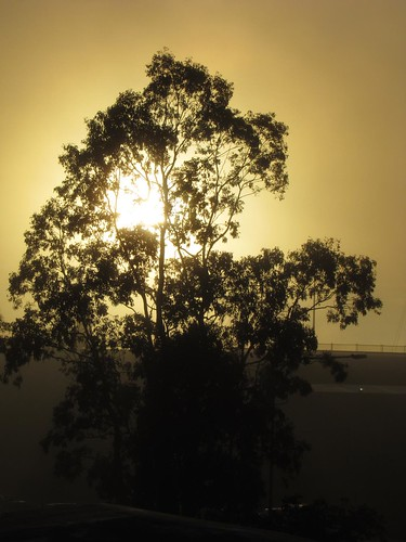 geotagged australia newsouthwales aus campbelltown blairmount geo:lat=3407198000 geo:lon=15079782100