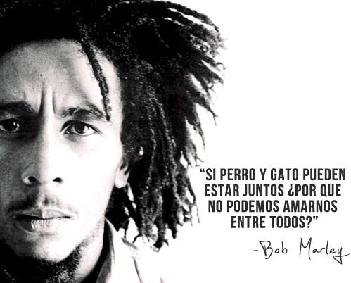 Frases De Bob Marley Si Perro Y Gato Pueden Estar Juntos