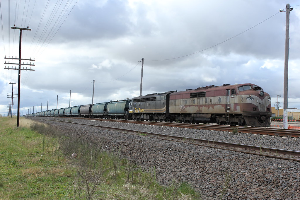 GM36 and S312 attached to a loaded Elzorro grain train at McIntyre Loop by bukk05
