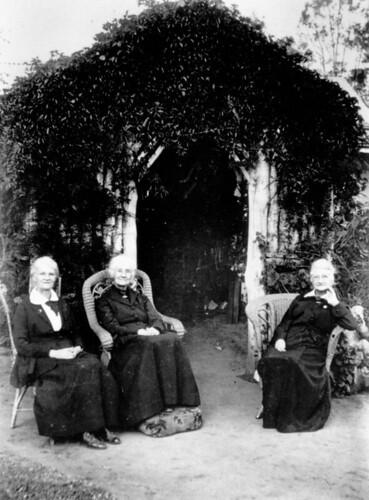 garden queensland 1900s bushhouse statelibraryofqueensland slq