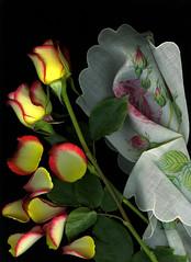 Roses & Linen