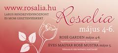 2012. április 17. 13:55 - Rosalia-Rosé fesztivál május 4-6.