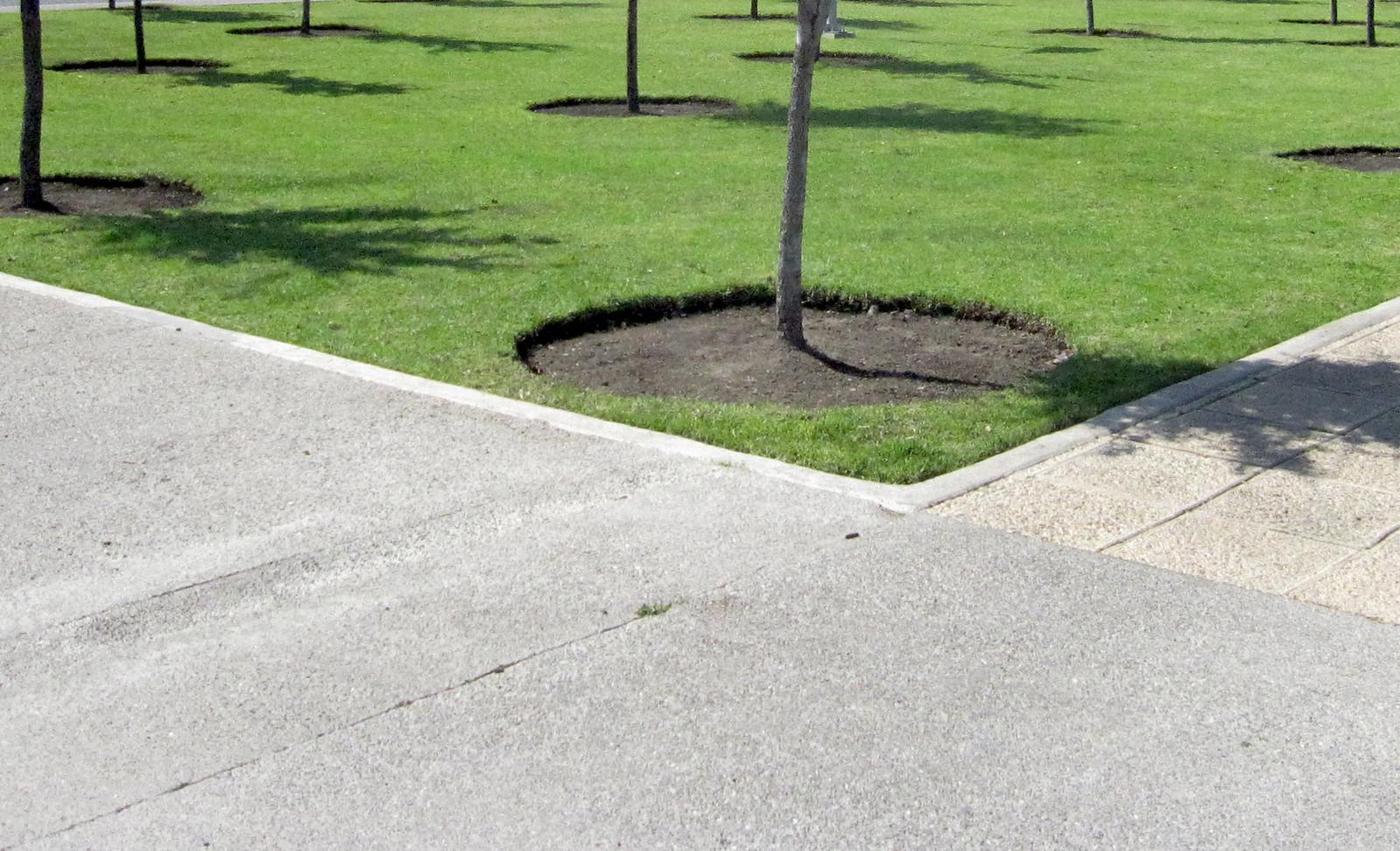 Parque Bicentenario 02