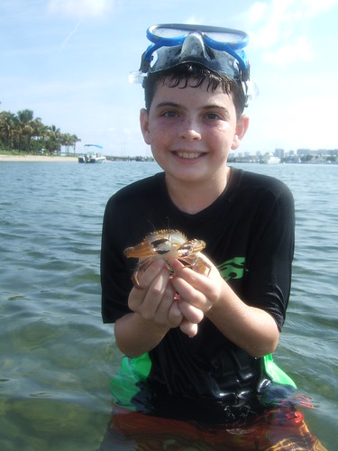 Jack catches a swimming crab!