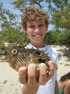 Michael with a striped burrfish | by AdventureMIke.com