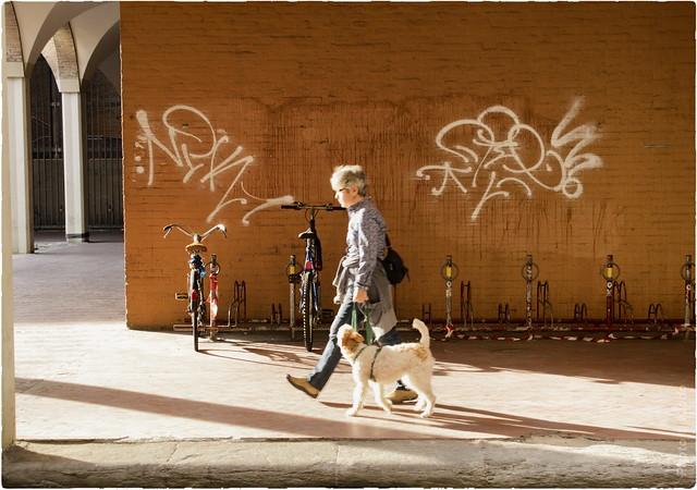 Walk in Bologna