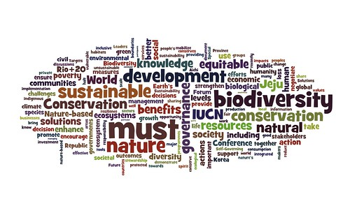 Wordled Jeju Declaration from the September 2012 #iucncongress | by planeta