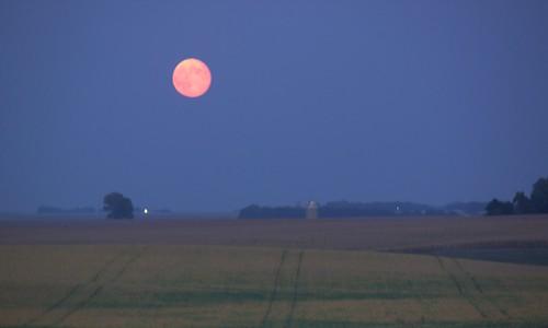 blue red moon field lines landscape beans corn nightshot dusk horizon fullmoon moonrise harvestmoon rule bluemoon thirds redmoon civiltwilight croponly