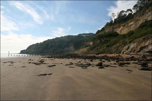 The coast between Shanklin and Luccombe