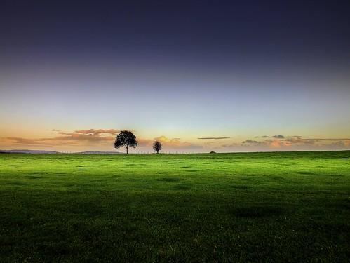 autumn trees light color green nature beautiful clouds landscape gloucestershire sunsetting array forestofdean thegalaxy bestcapturesaoi ericgoncalves elitegalleryaoi rememberthatmomentlevel1